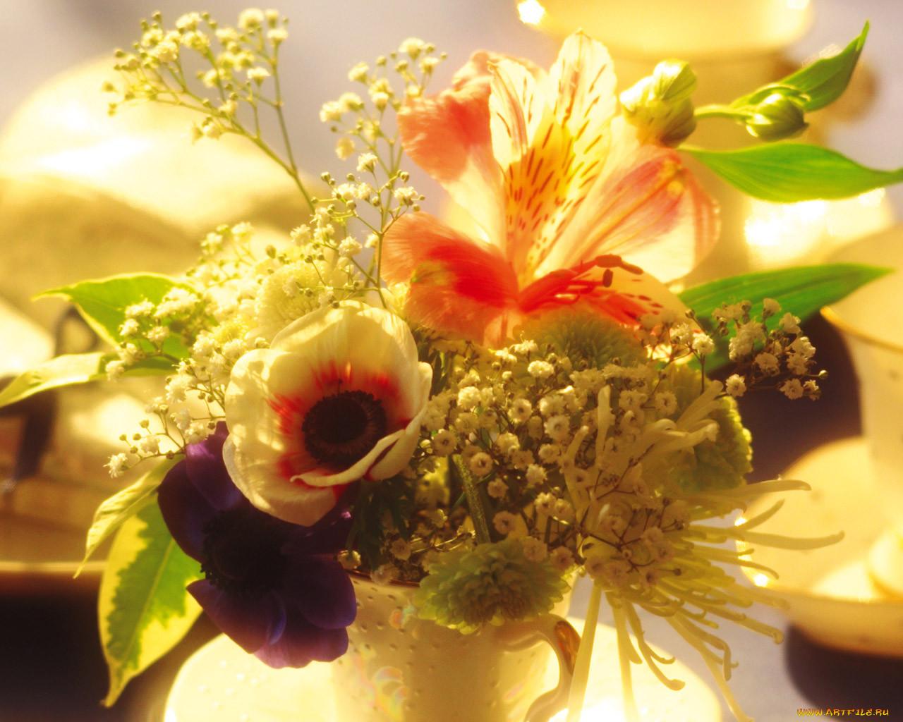 фото чудесного цветка организациях